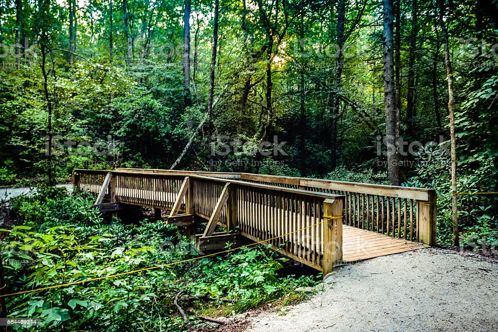 Wooden footbridge at Dupont Recreational Forest Park stock photo