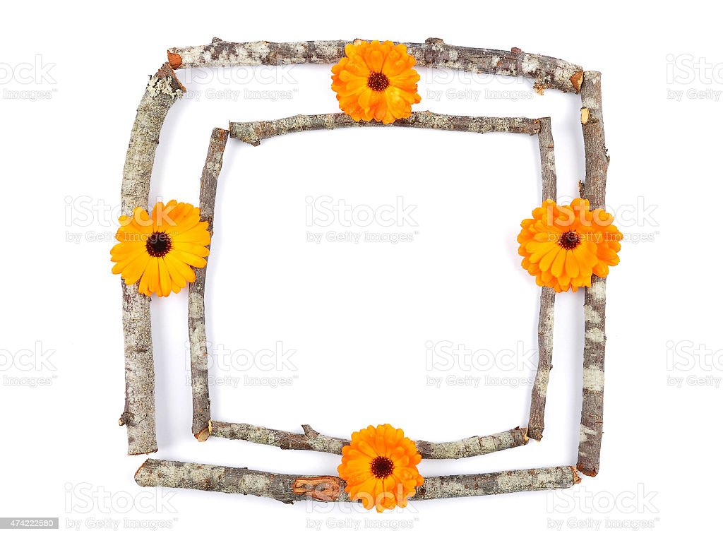 Wooden frame with calendula stock photo