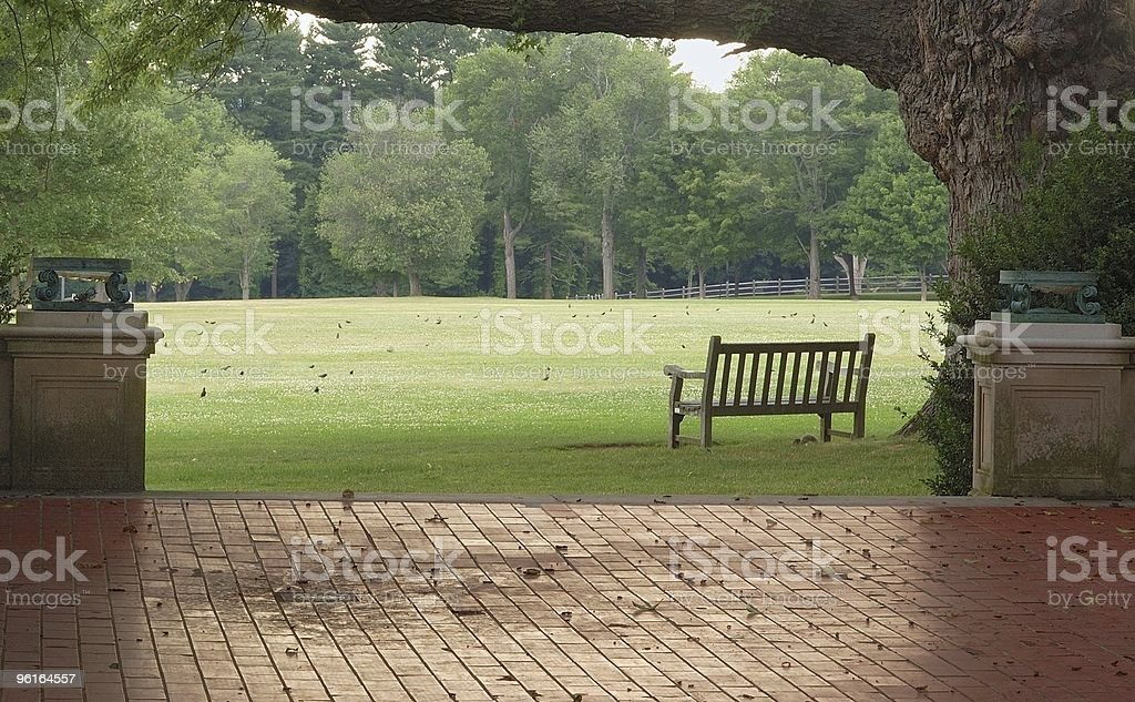 Wooden garden bench under large tree, cloudy day. royalty-free stock photo