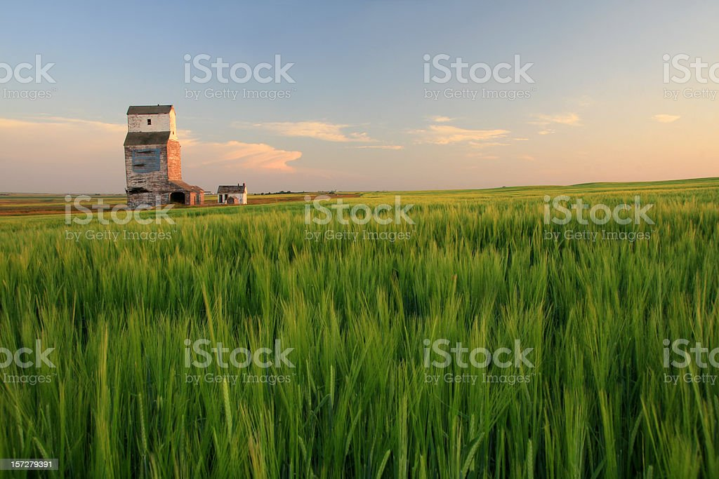 Wooden Grain Elevator on the Prairie stock photo