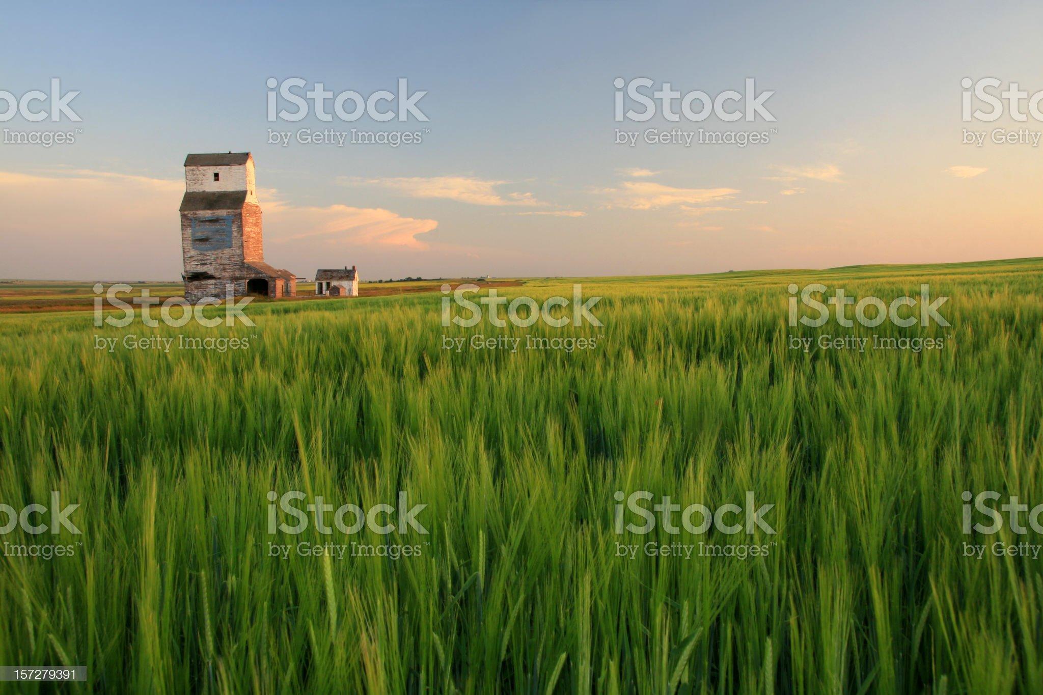 Wooden Grain Elevator on the Prairie royalty-free stock photo