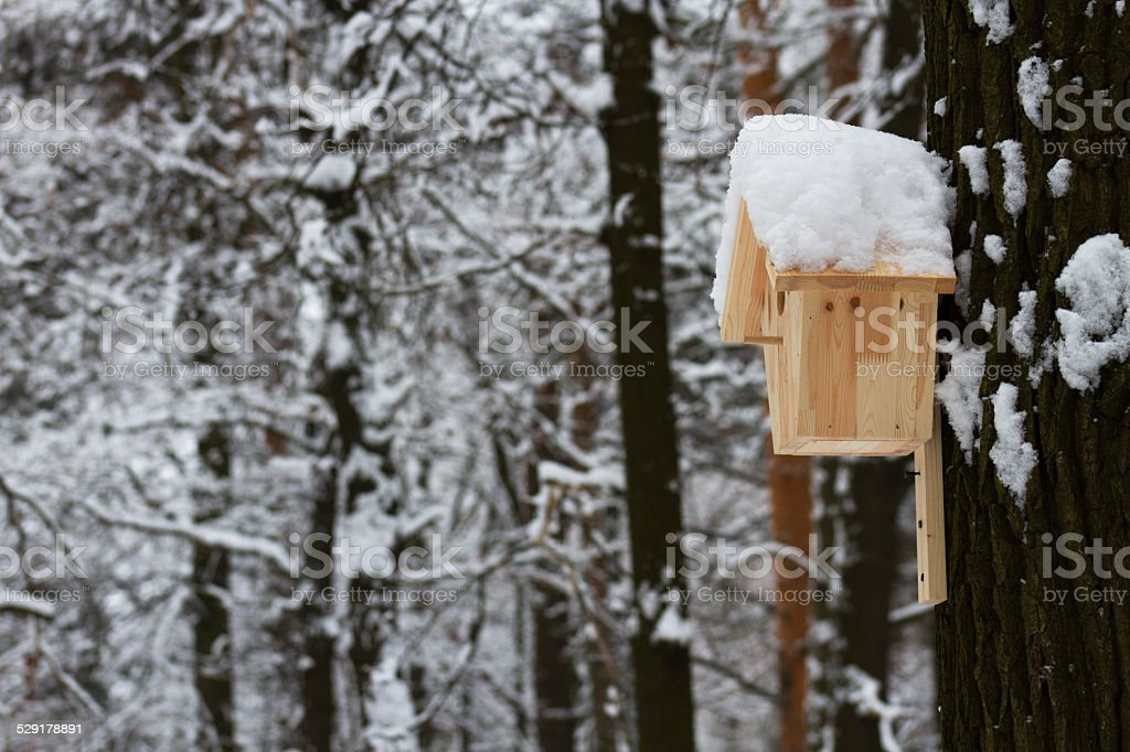 Wooden house for the birds in winter Park stock photo