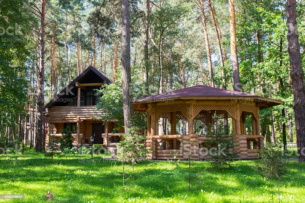 Wooden house in the wood stock photo