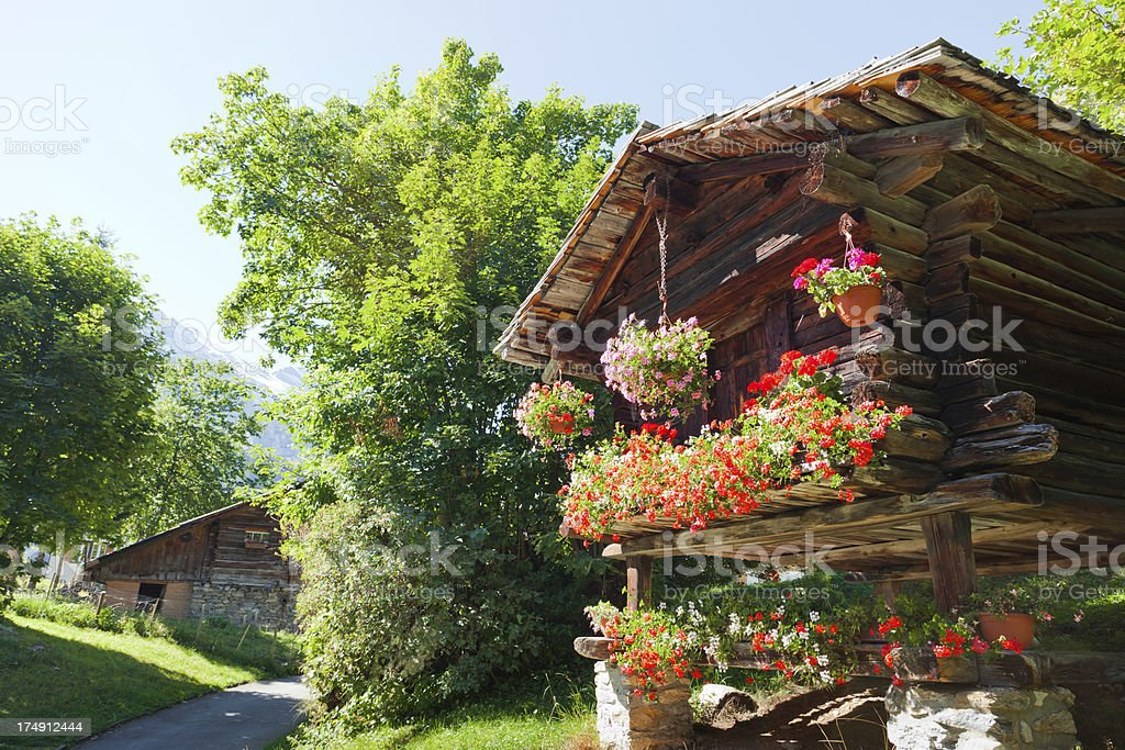 wooden house with flowers around royalty-free stock photo
