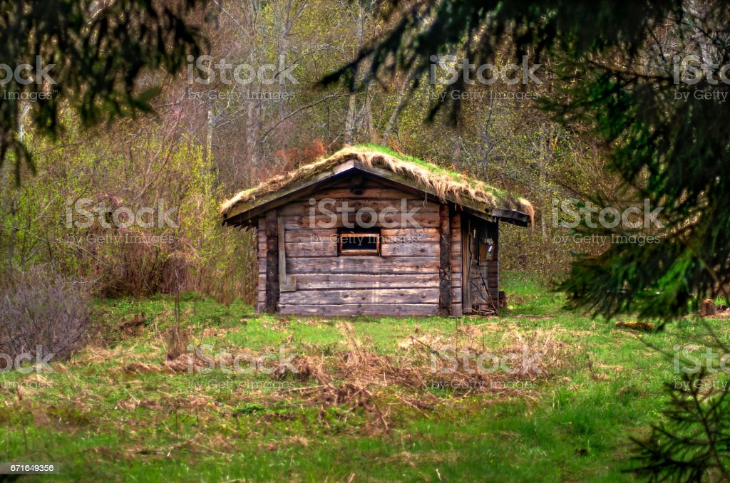 Wooden house with outdoor bath in forest stock photo