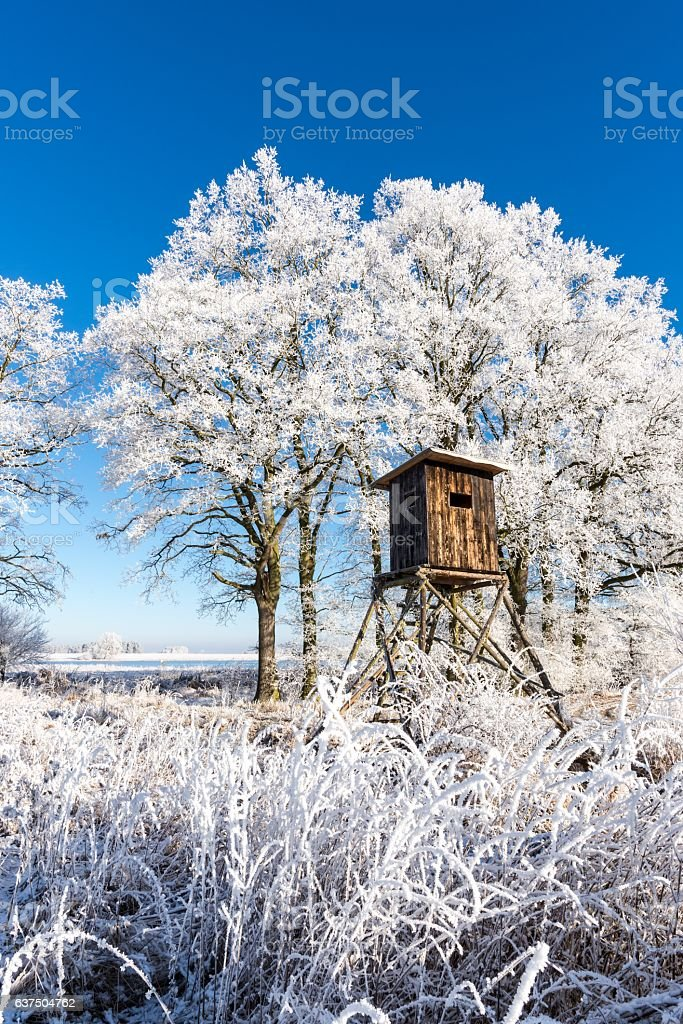 Wooden hunting shelter in front of trees covered by frost stock photo