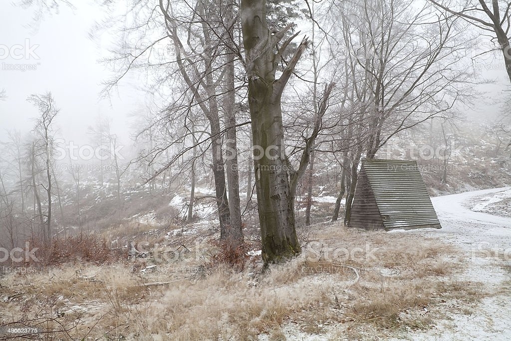 wooden hut in snowy forest stock photo