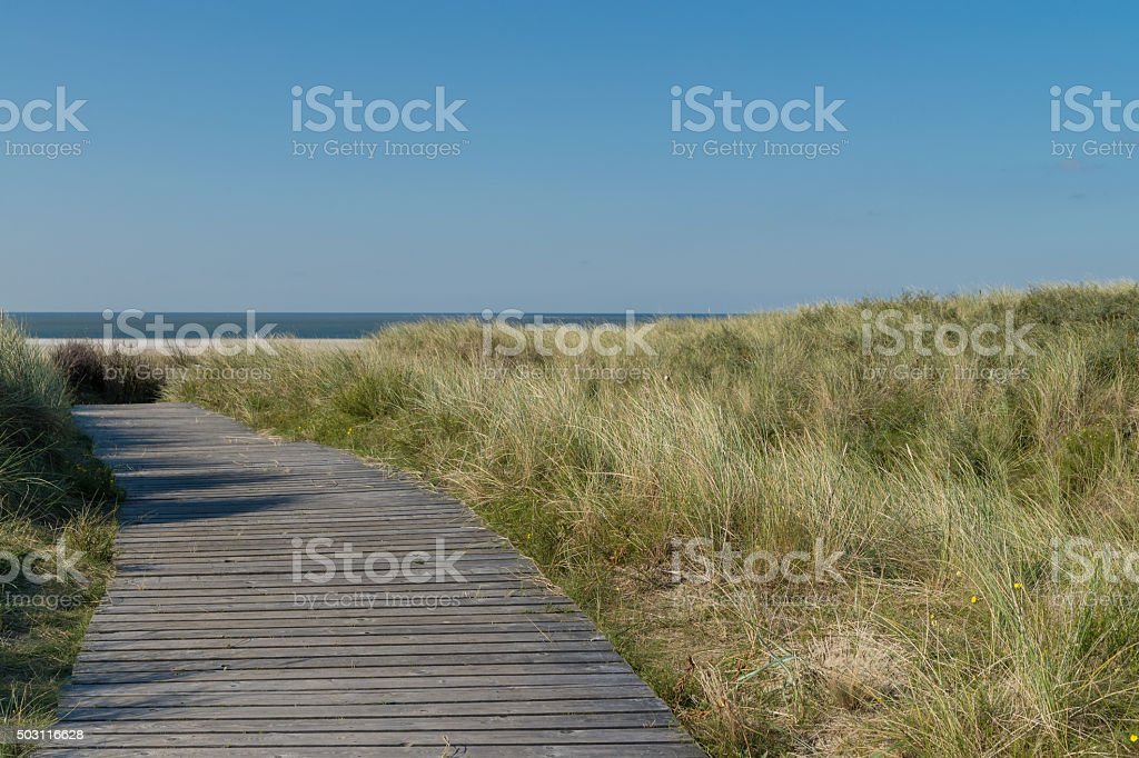 Hölzerner Steg durch eine Dünenlandschaft an der Nordsee stock photo