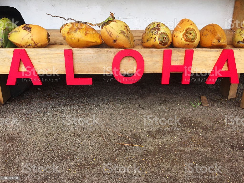 Wooden letters spell aloha, with coconuts above stock photo
