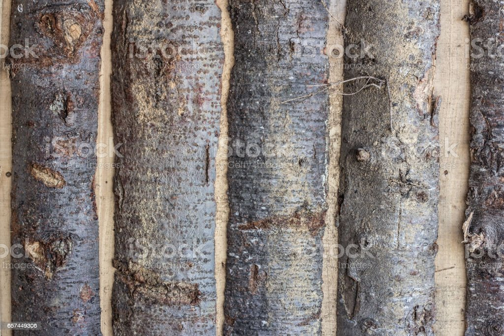 wooden log background stock photo