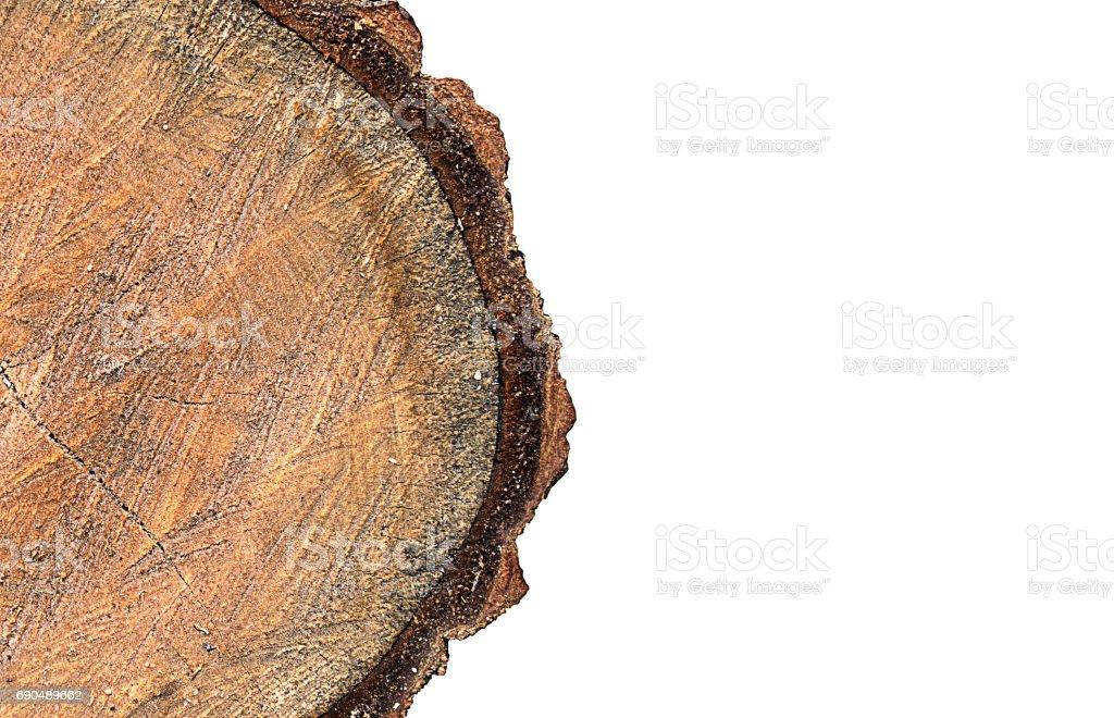 Wooden Log Isolate on white background stock photo