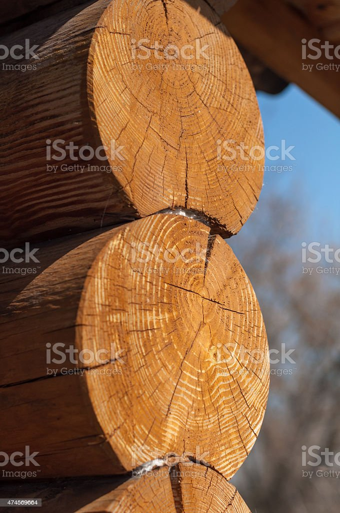 wooden logs stock photo