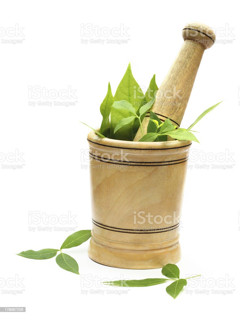 Wooden mortar and pestle with green herbs royalty-free stock photo