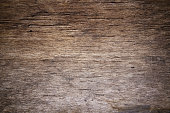 Wooden old tree brown texture background