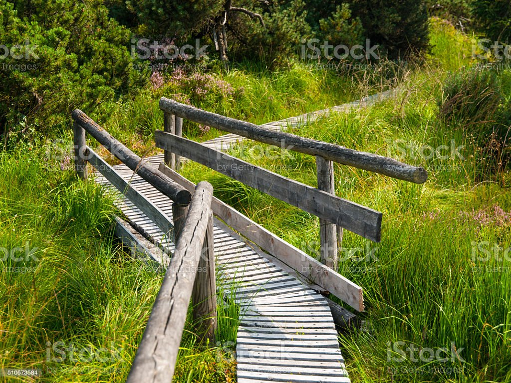 Wooden path in moor area stock photo