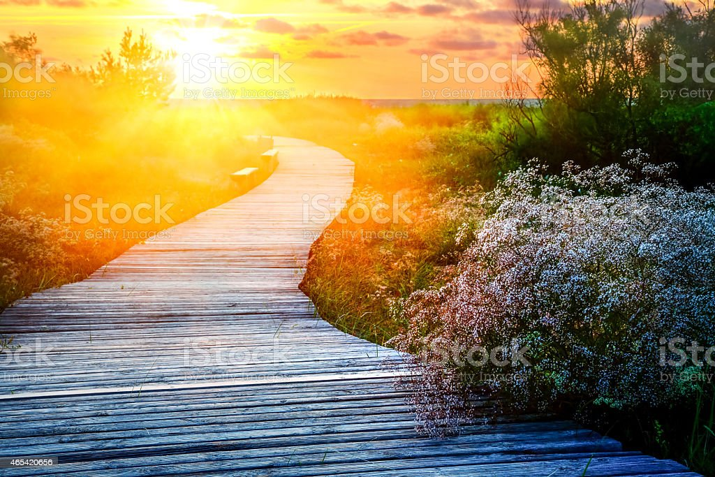 Wooden path meanders over heathland towards sunrise/sunset stock photo
