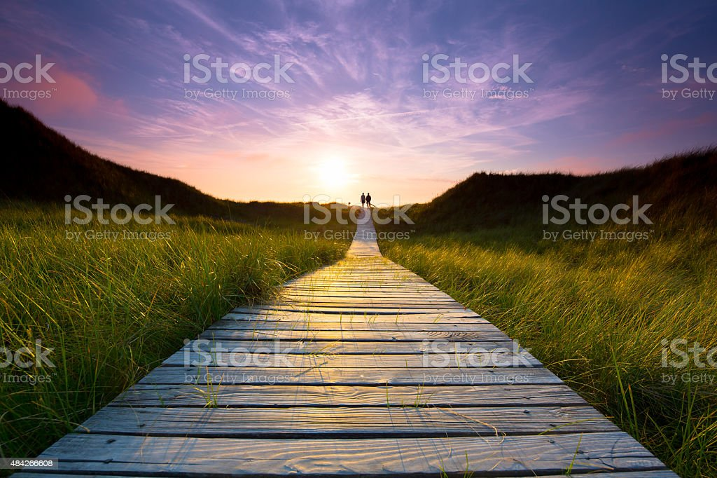 wooden path through the dunes stock photo