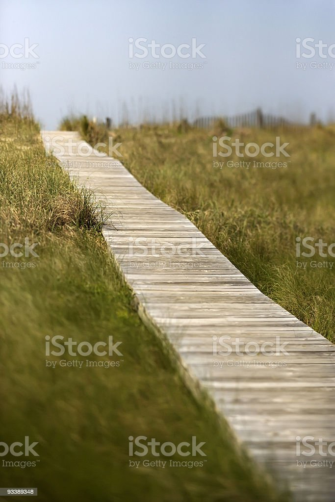 Wooden path to beach stock photo