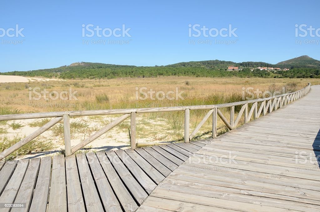 Wooden pathway at the Dunes stock photo
