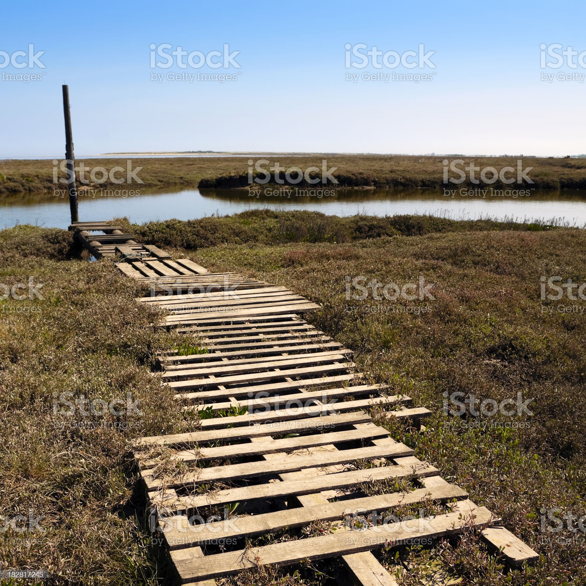 Wooden pathway at Thornham royalty-free stock photo