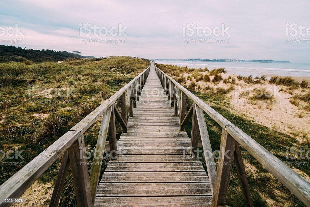 Wooden pathway in the dunes stock photo