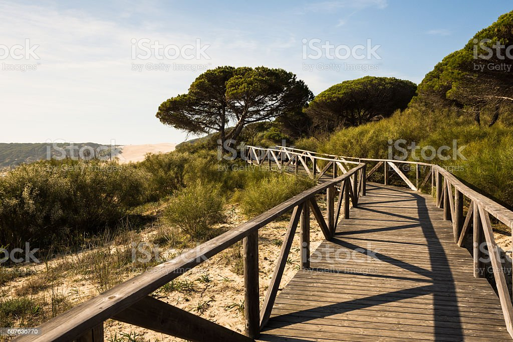 Wooden pathway leading to Bolonia dune stock photo