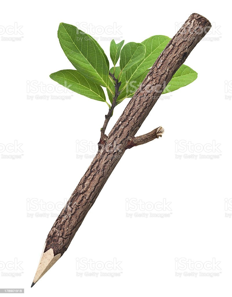 Wooden Pencil In White Background royalty-free stock photo