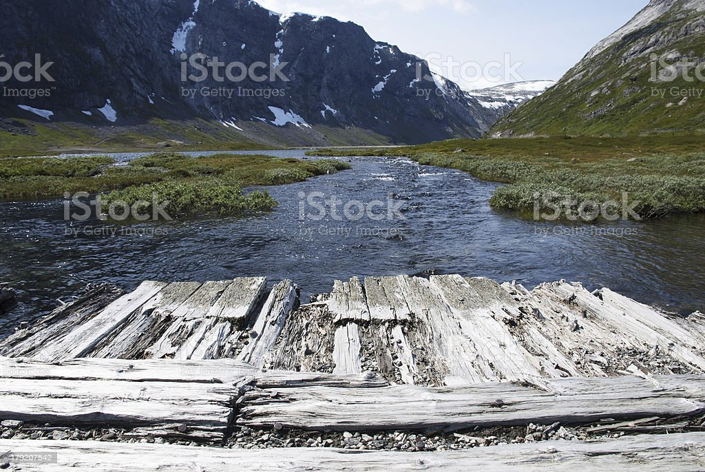 Wooden Planks with Copyspace in Nature royalty-free stock photo