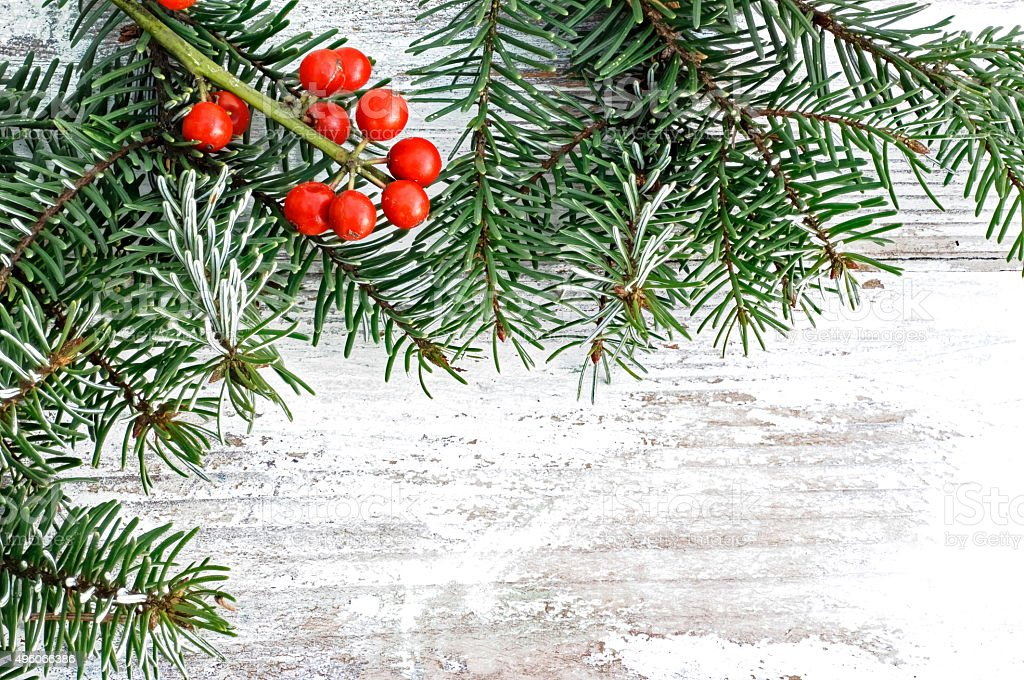 Wooden plate with fir branch Christmas stock photo