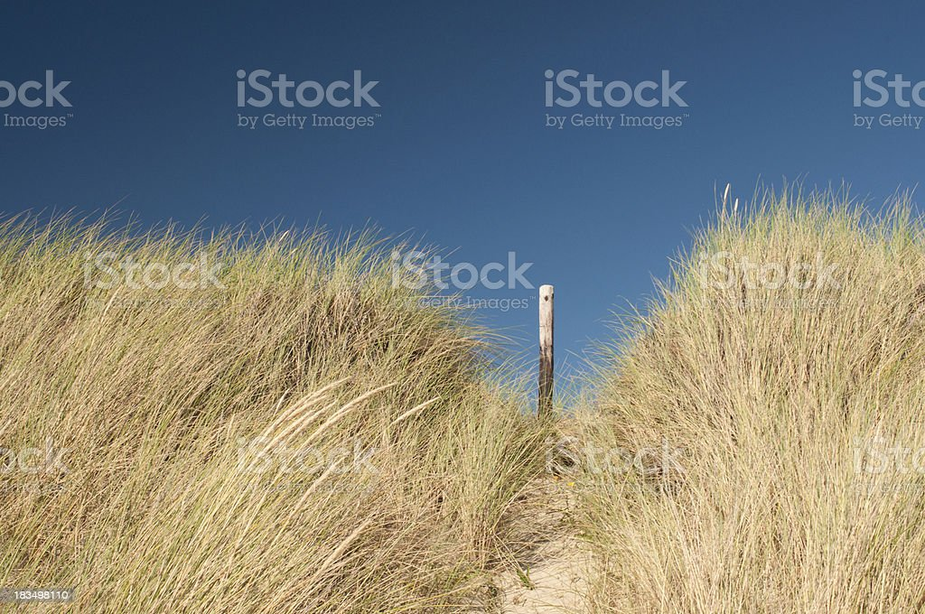 Wooden pole on sand dune royalty-free stock photo