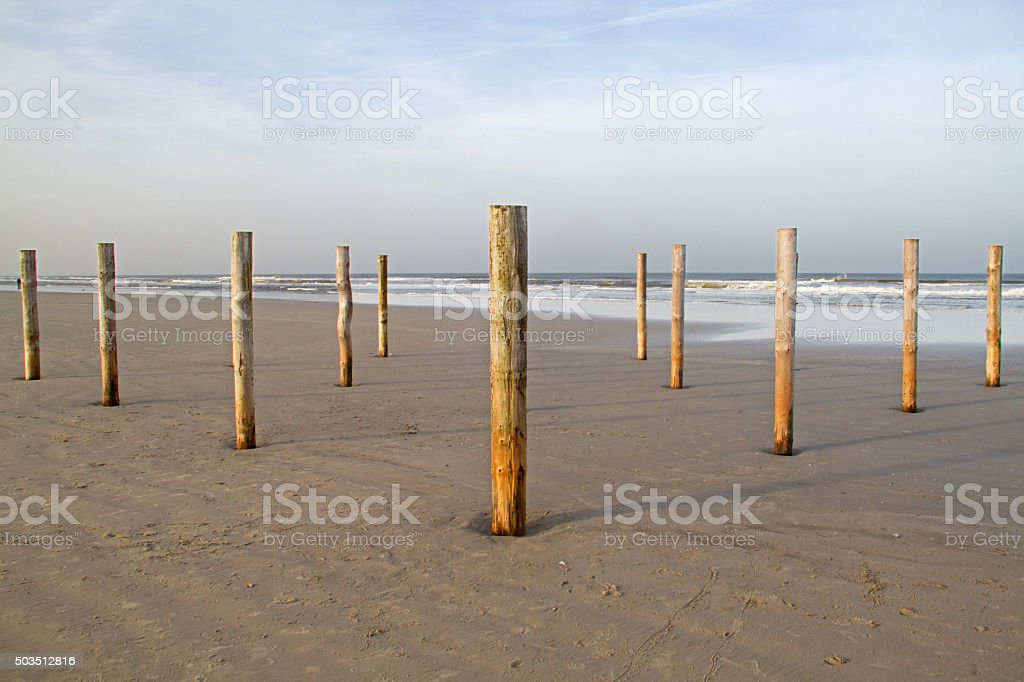 Wooden poles on beach stock photo