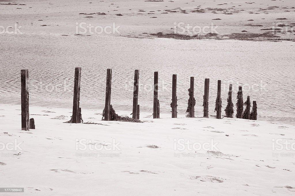 Wooden Posts at Morar Bar, Scotland royalty-free stock photo