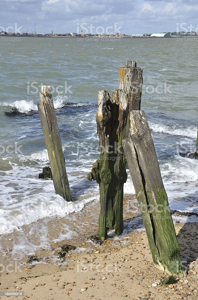 Wooden posts in portait royalty-free stock photo