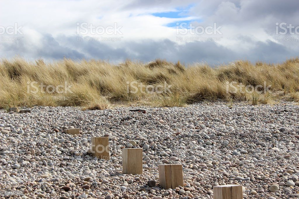 Wooden Posts On A Pebble Covered Findhorn Beach stock photo