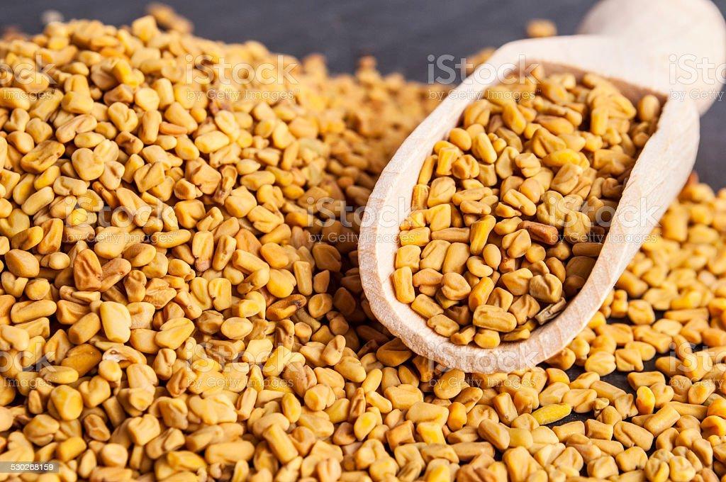 wooden scoop with fenugreek seeds stock photo
