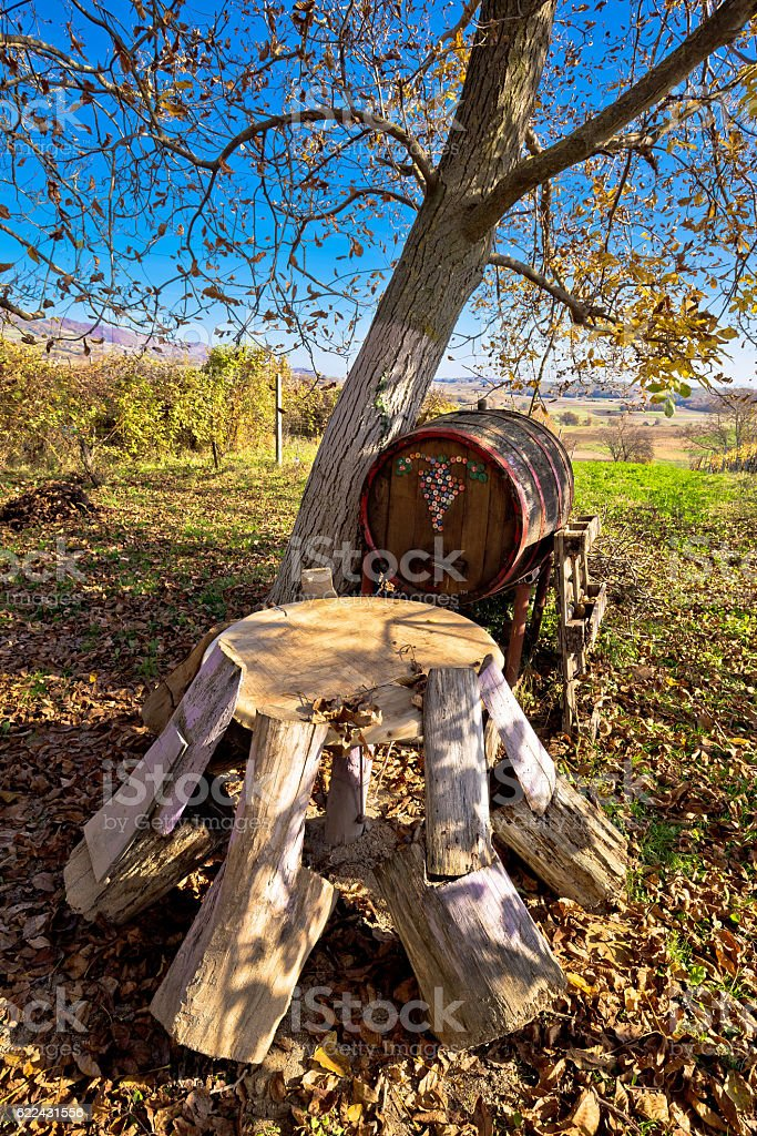 Wooden seat and barrel in vineyard stock photo