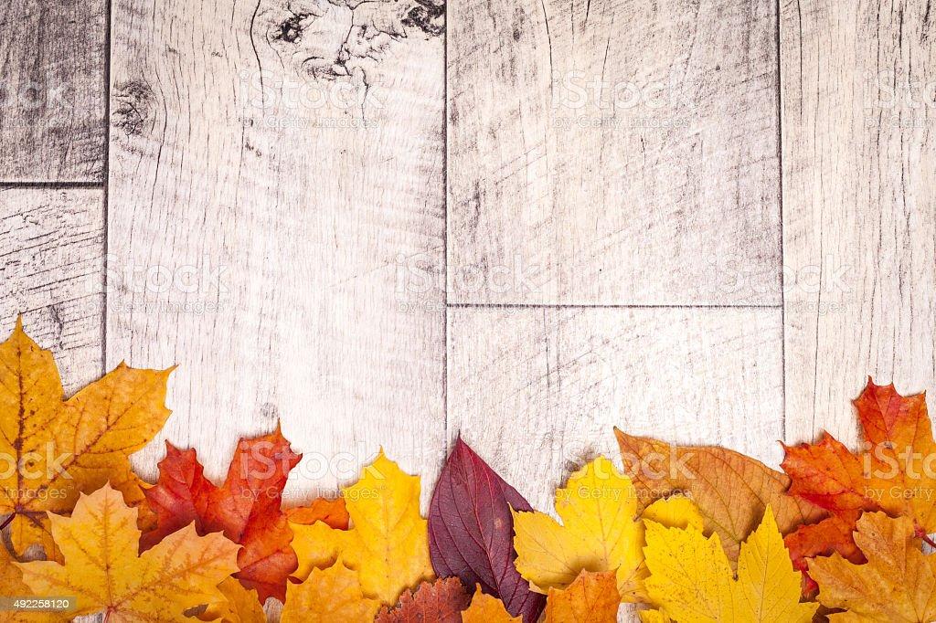 wooden shabby autumn background stock photo