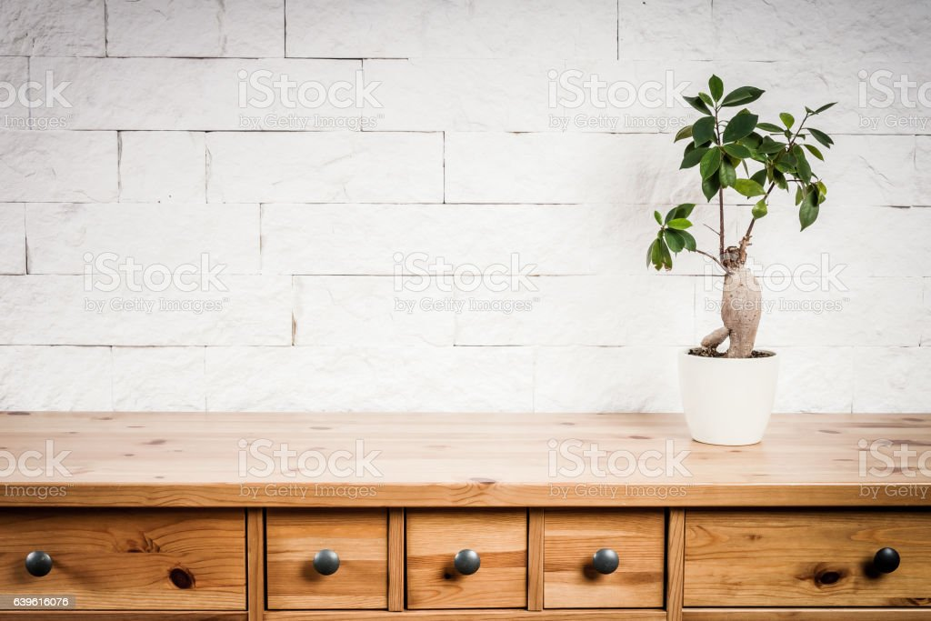 wooden shelf, flower and wall stock photo
