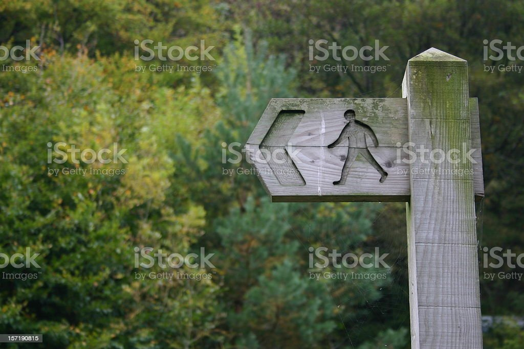 wooden sign post in a forest showing the direction royalty-free stock photo