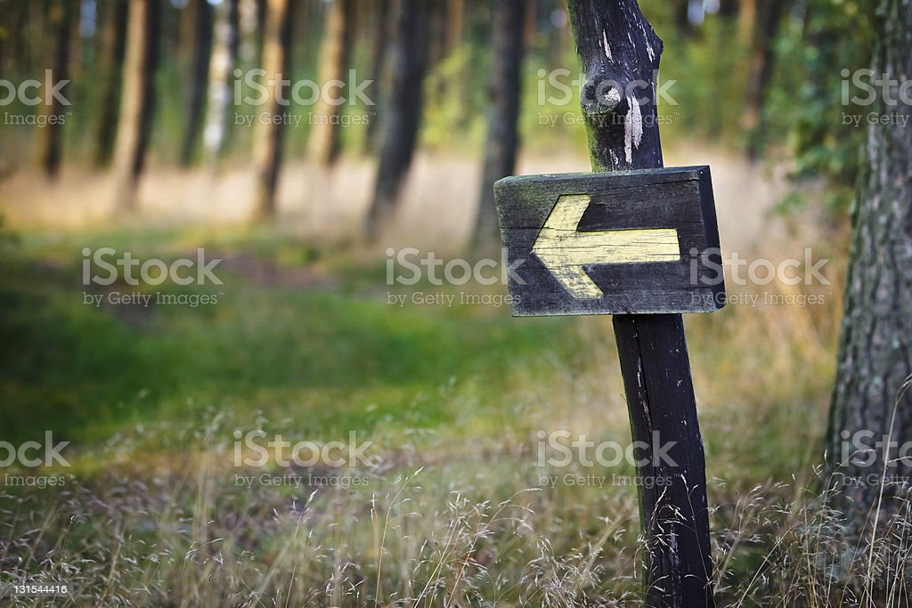 Wooden sign with yellow arrow in a forest stock photo