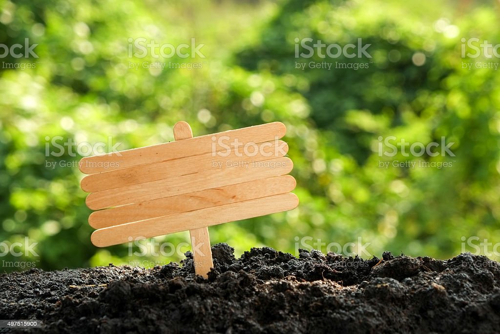 wooden signboard in the forest garden stock photo