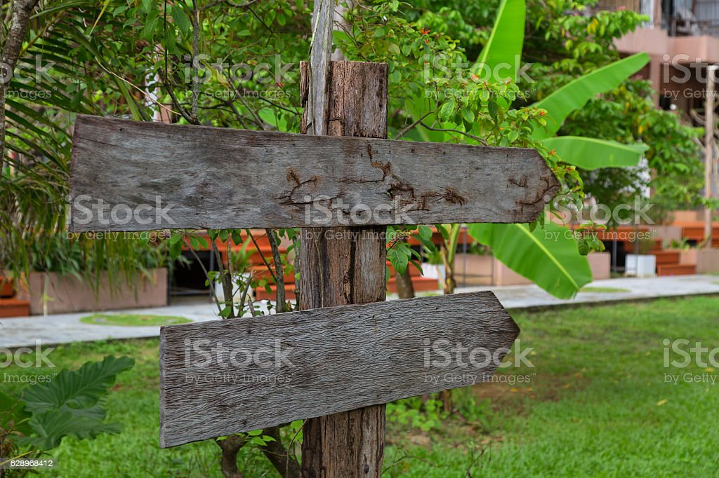 wooden signboard in the forest stock photo