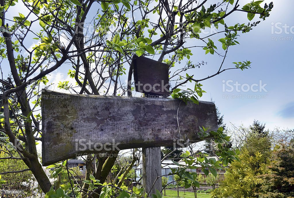 Wooden signpost in the garden, add your own text. royalty-free stock photo