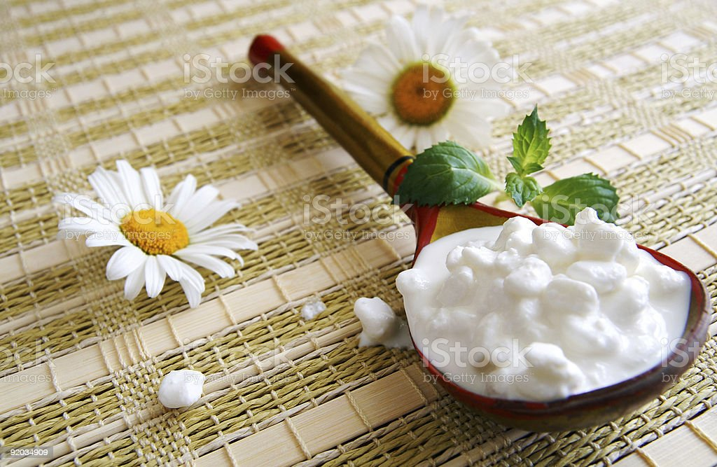 Wooden spoon with cottage cheese royalty-free stock photo