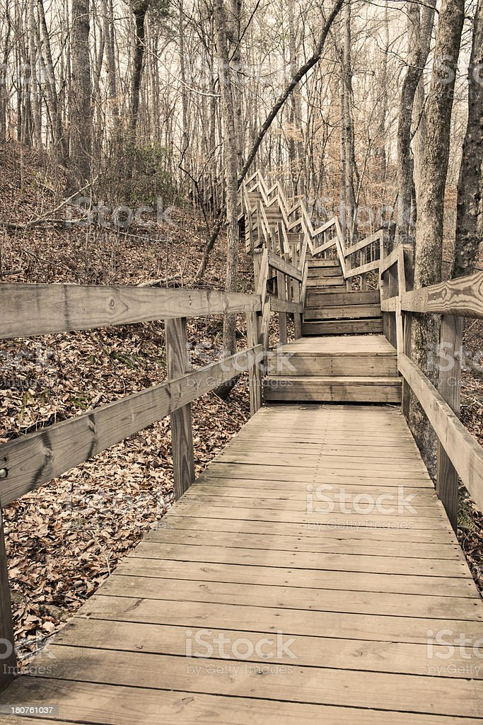 Wooden Staircase in the Forest royalty-free stock photo