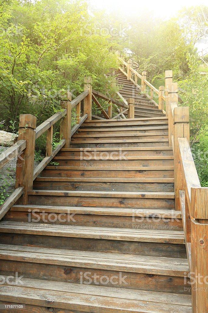 Wooden steps in Garden stock photo