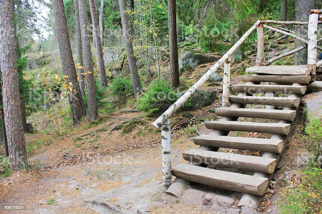 Wooden steps stairs outdoor design stock photo