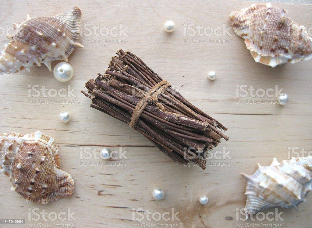 木製スティック、シーシェルズとパール ロイヤリティフリーストックフォト