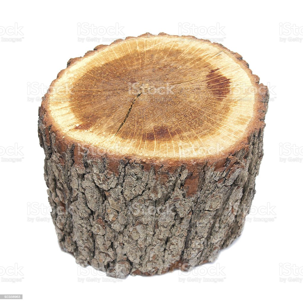 Wooden stump royalty-free stock photo