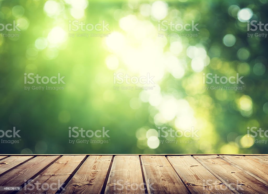 wooden surface and sunny forest stock photo